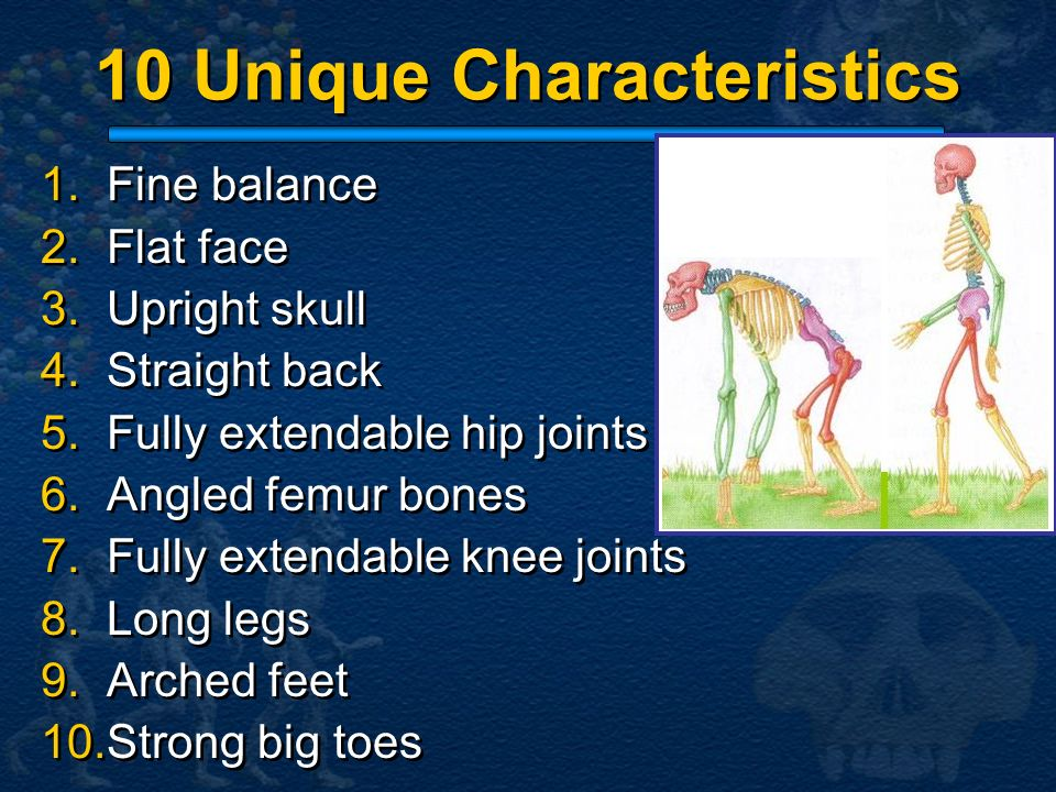 10 Unique Characteristics
