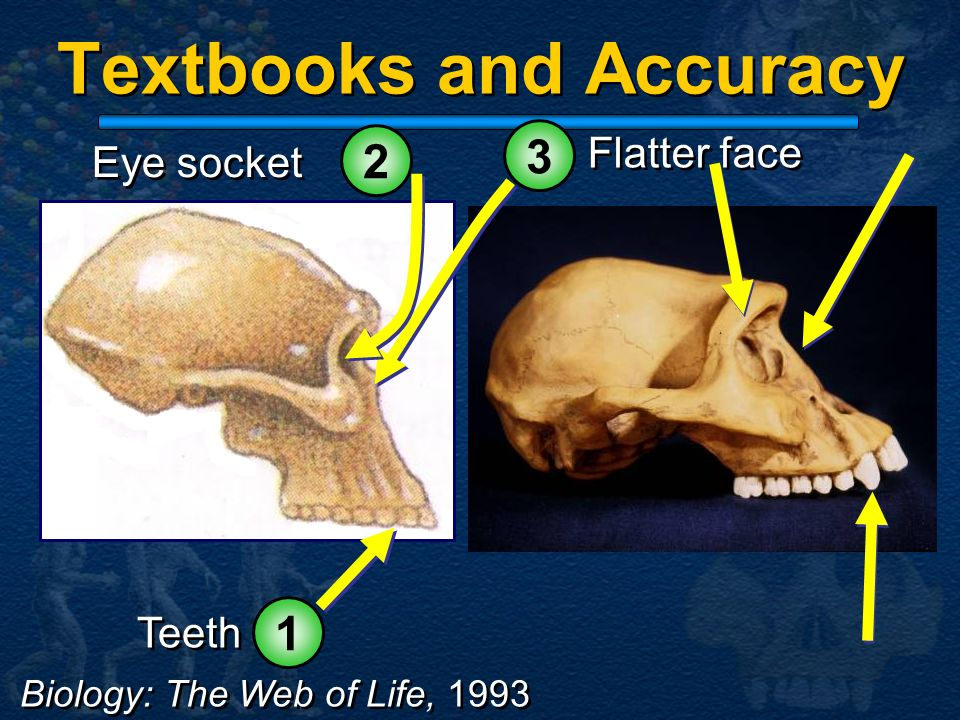 Textbooks and Accuracy