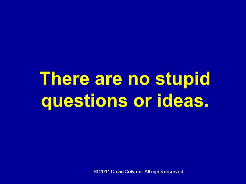 There are no stupid questions or ideas.