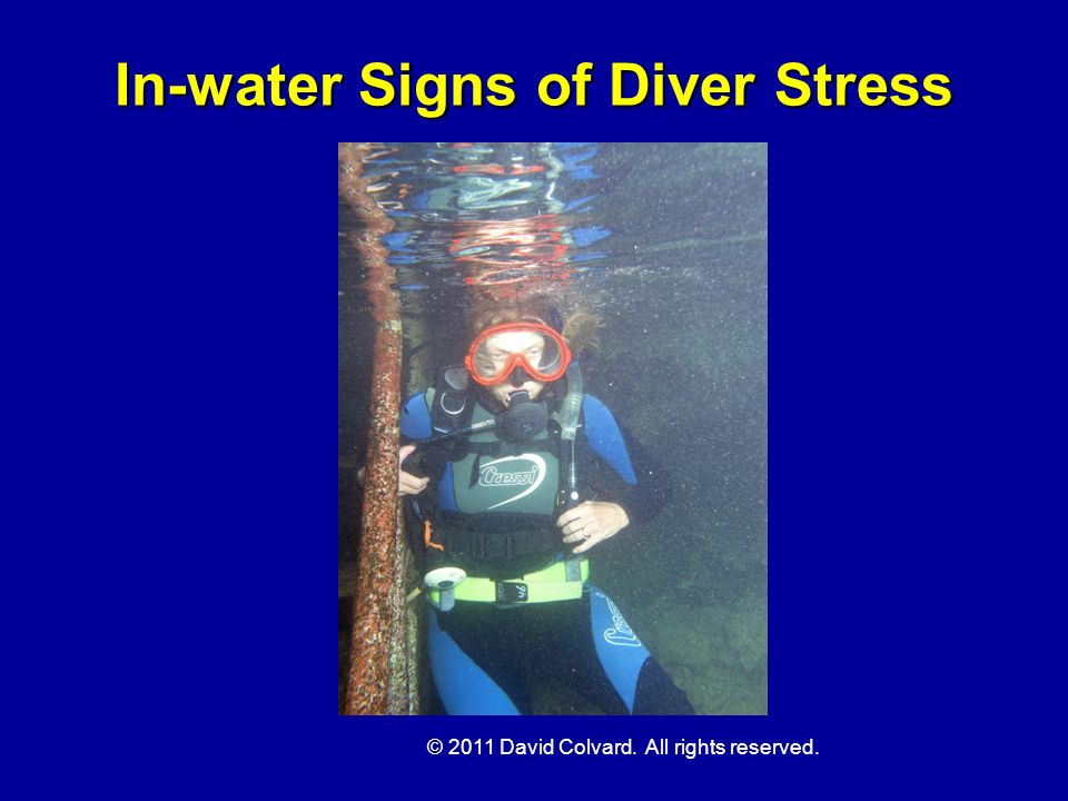 In-water Signs of Diver Stress
