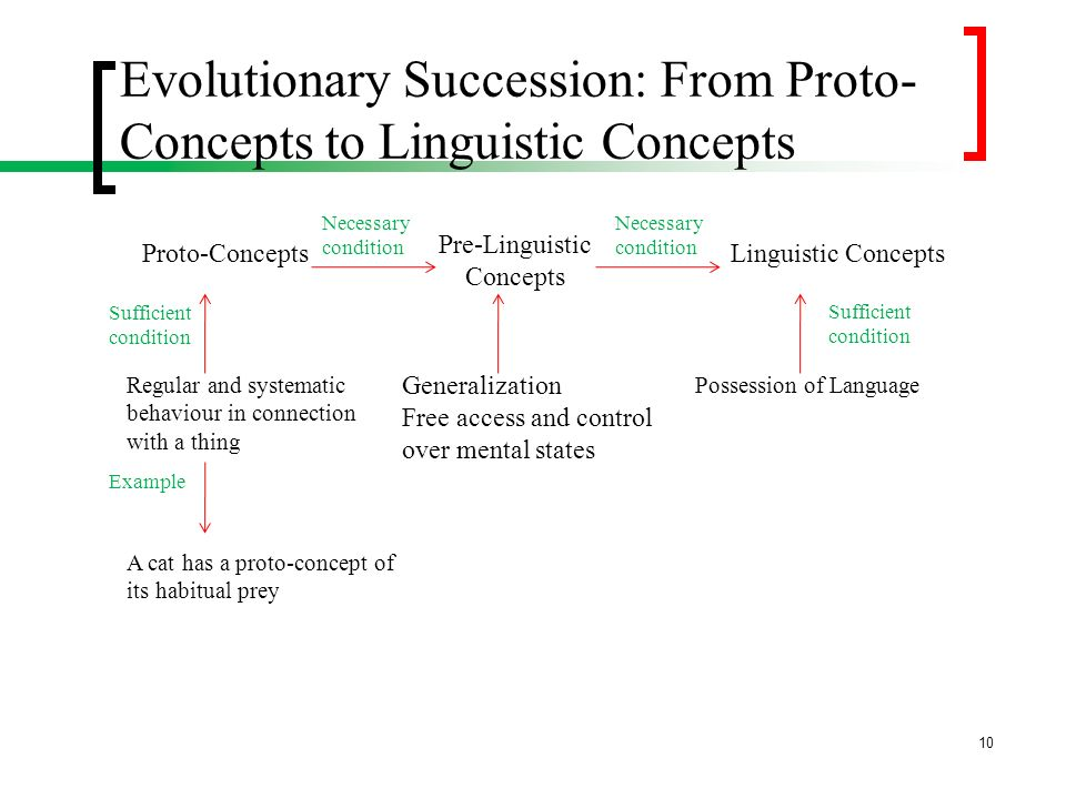 Evolutionary Succession: From Proto-Concepts to Linguistic Concepts