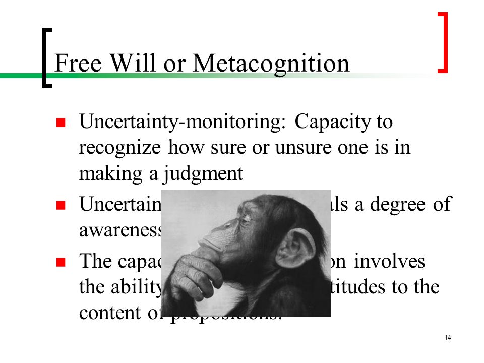 Free Will or Metacognition