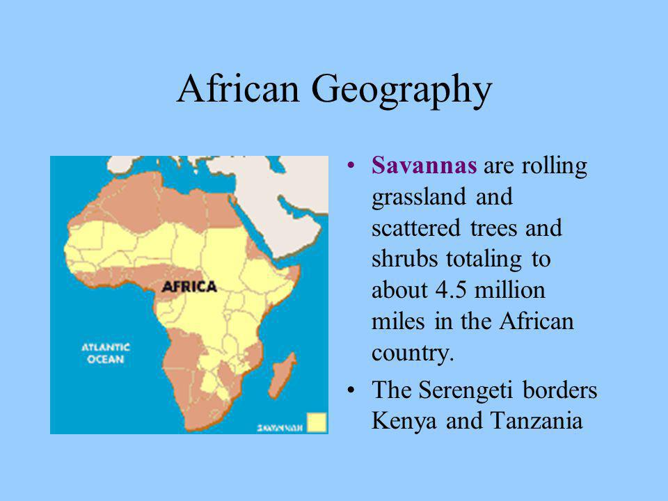 African Geography Savannas are rolling grassland and scattered trees and shrubs totaling to about 4.5 million miles in the African country.