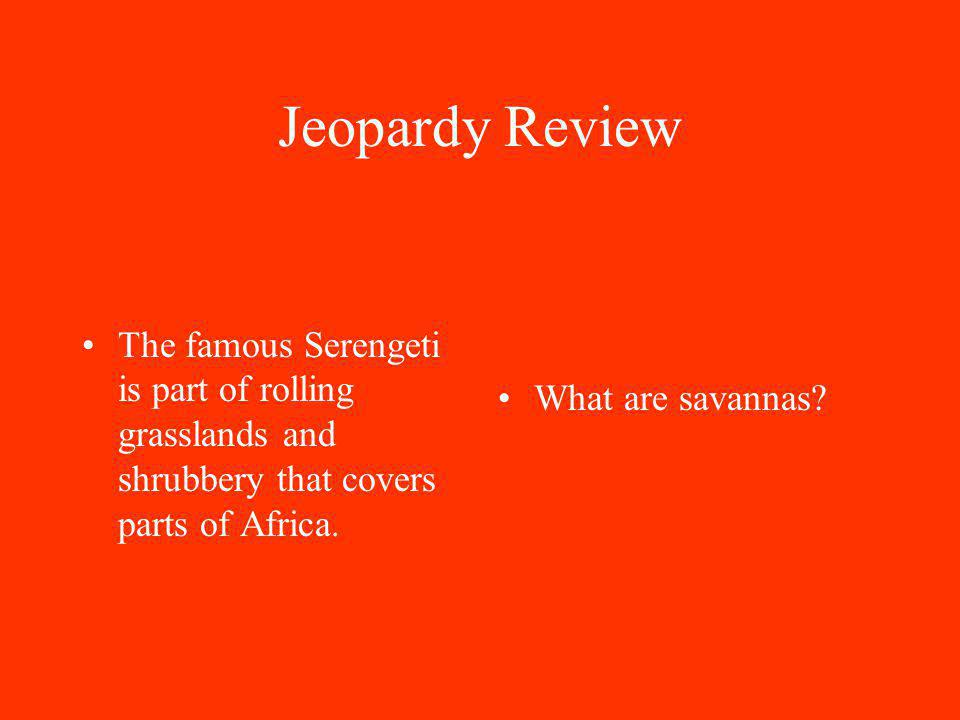 Jeopardy Review The famous Serengeti is part of rolling grasslands and shrubbery that covers parts of Africa.