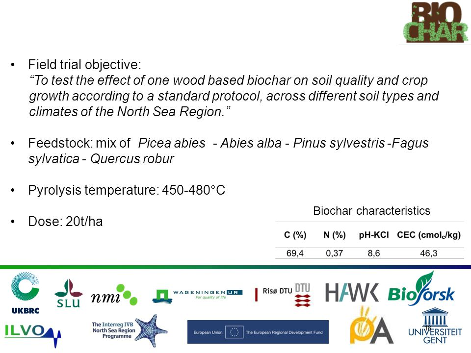 Biochar characteristics