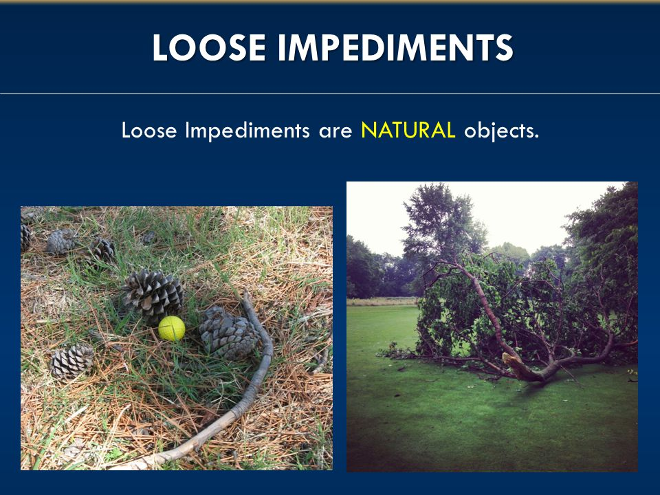 Loose Impediments are NATURAL objects.