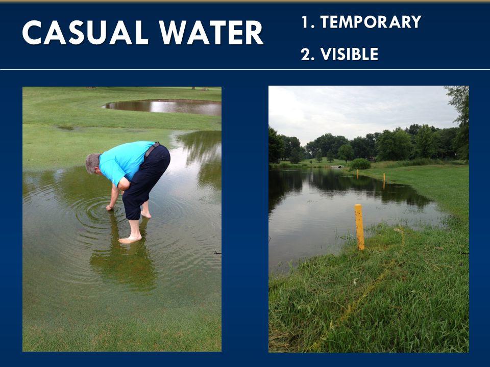 1. TEMPORARY CASUAL WATER 2. VISIBLE