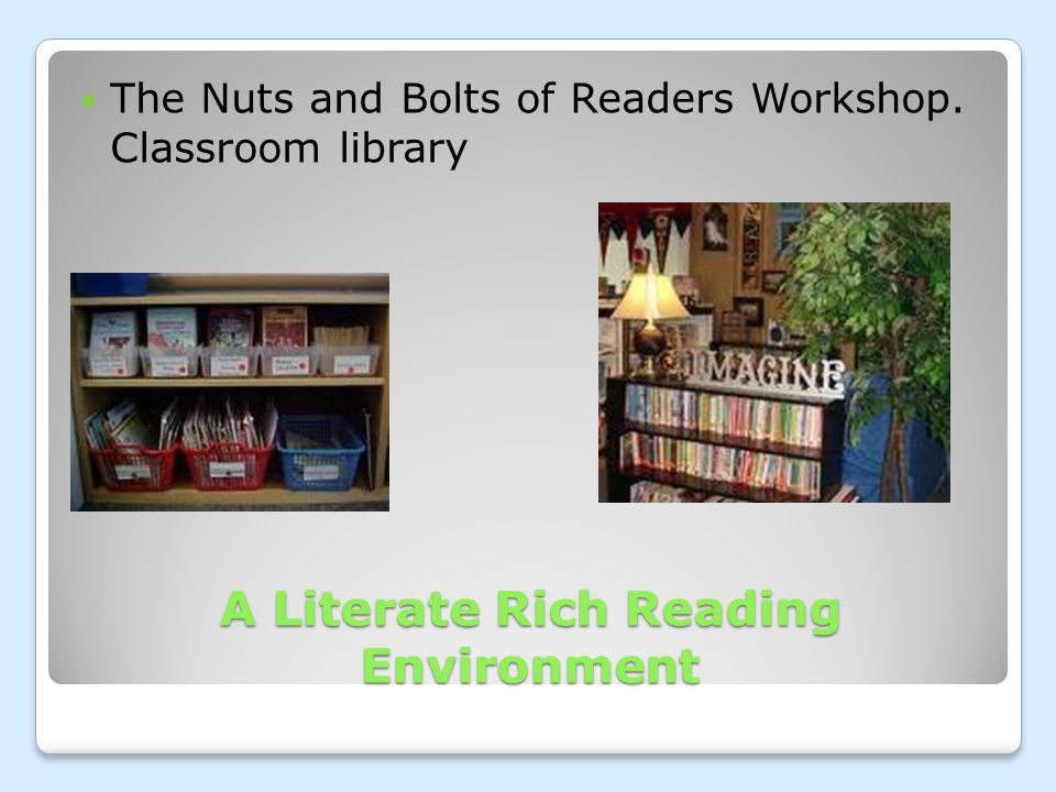 A Literate Rich Reading Environment