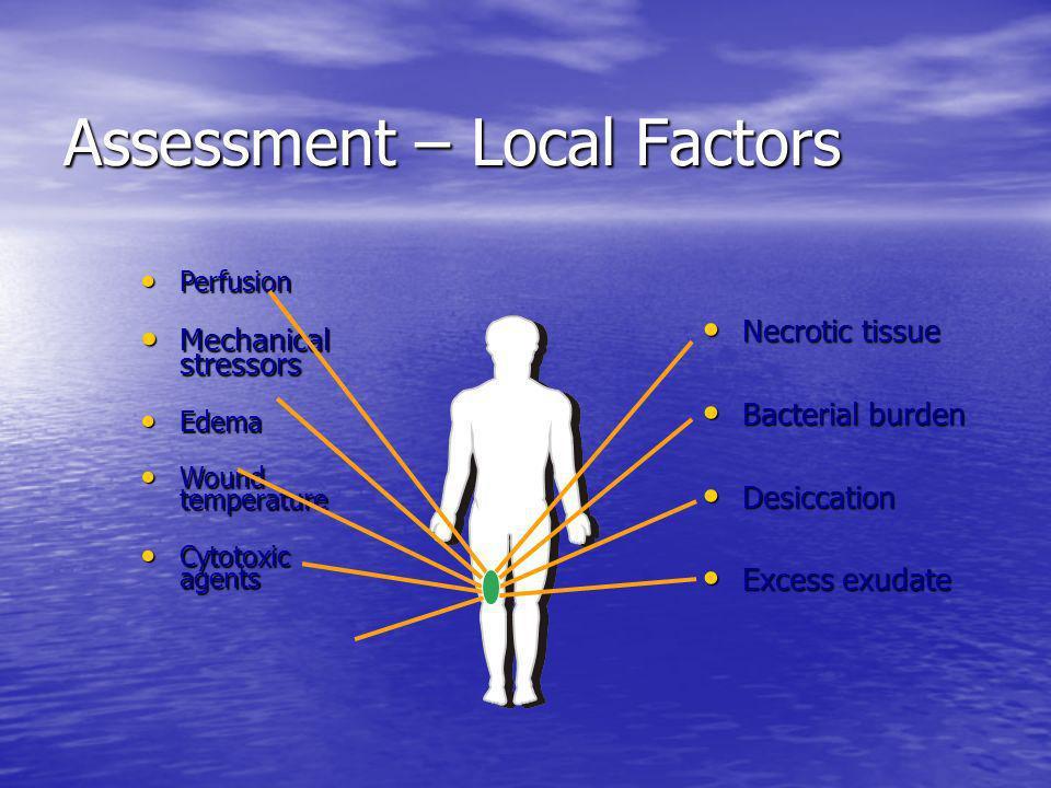 Assessment – Local Factors