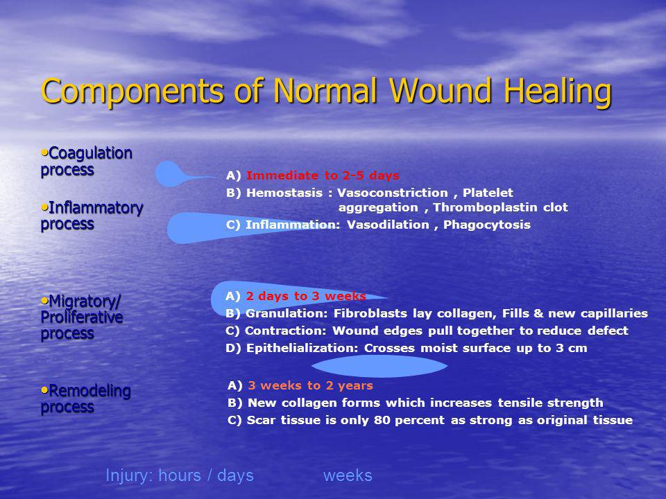 Components of Normal Wound Healing