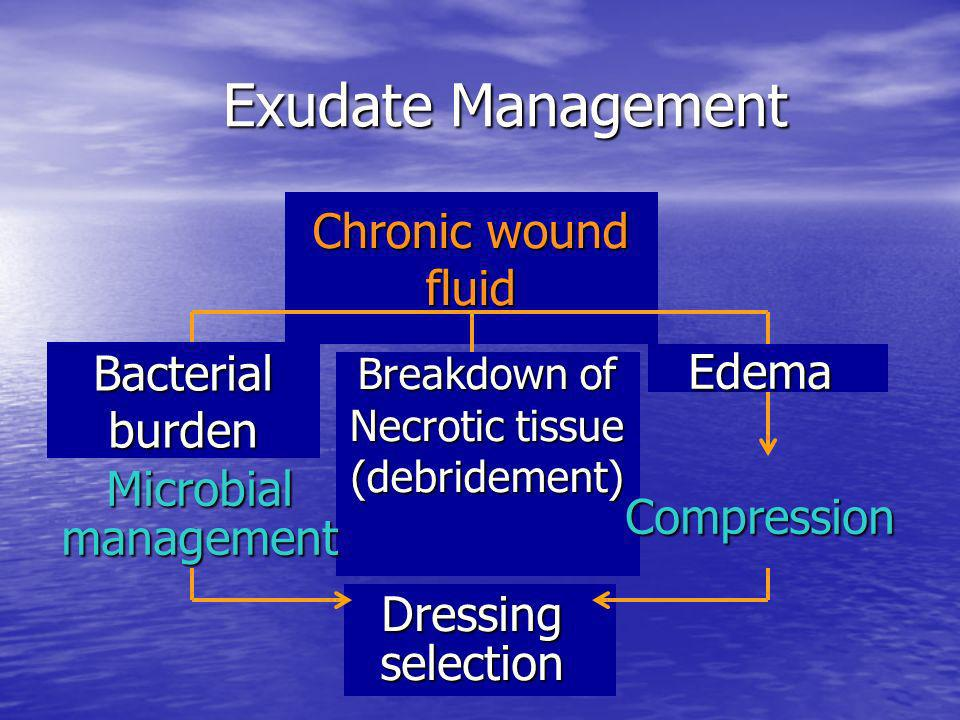 Breakdown of Necrotic tissue (debridement)