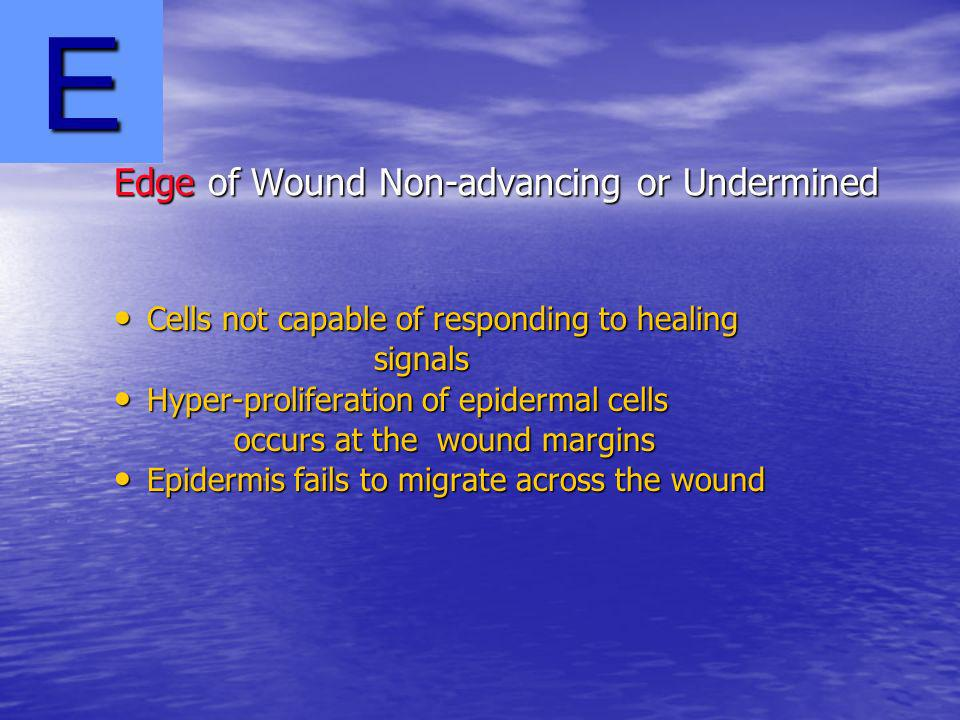 Edge of Wound Non-advancing or Undermined