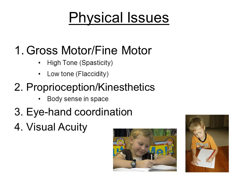 Physical Issues Gross Motor/Fine Motor Proprioception/Kinesthetics