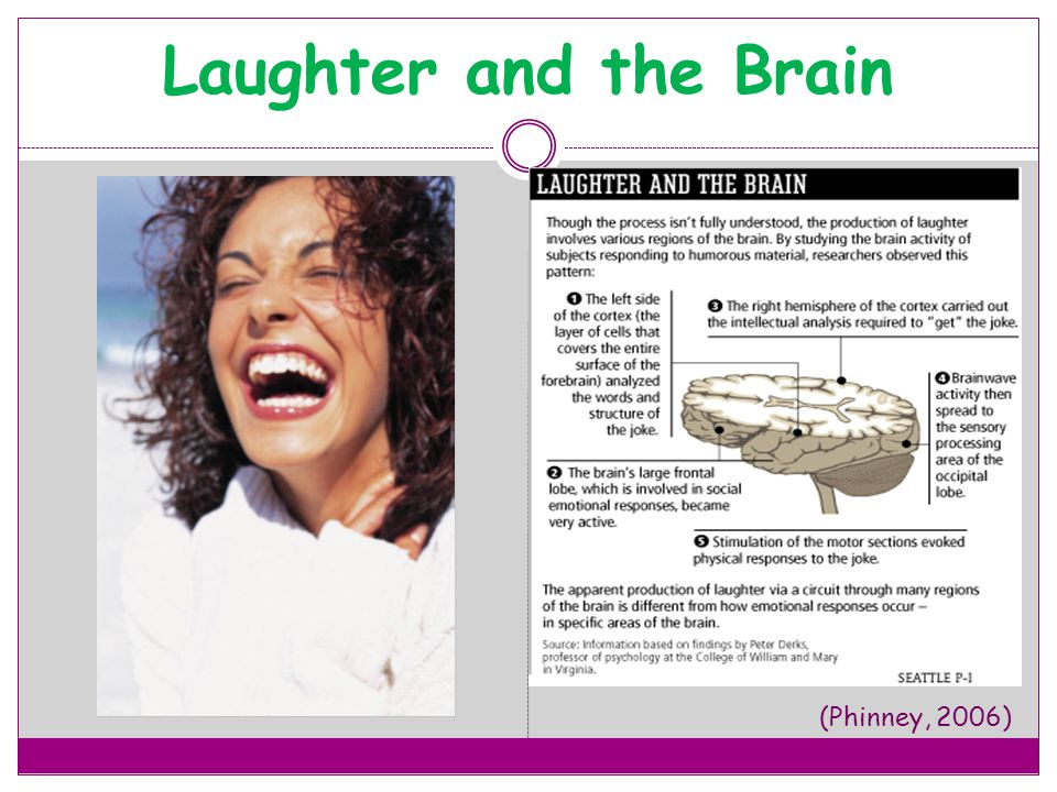 Laughter and the Brain (Phinney, 2006)