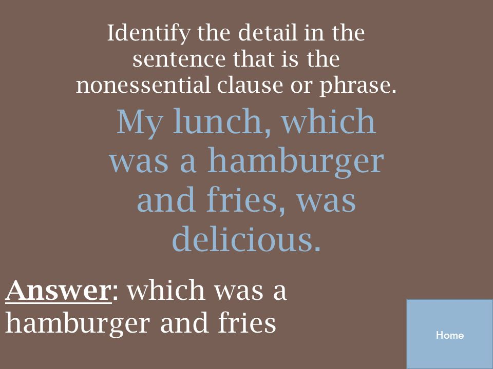 My lunch, which was a hamburger and fries, was delicious.