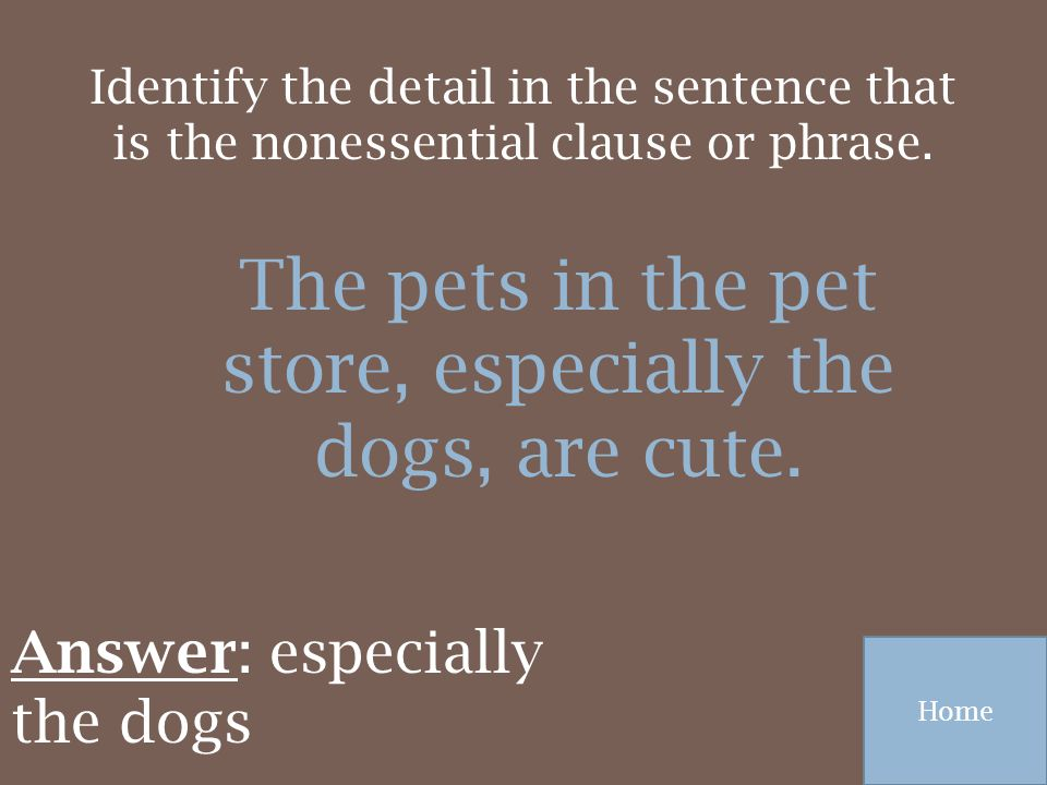 The pets in the pet store, especially the dogs, are cute.