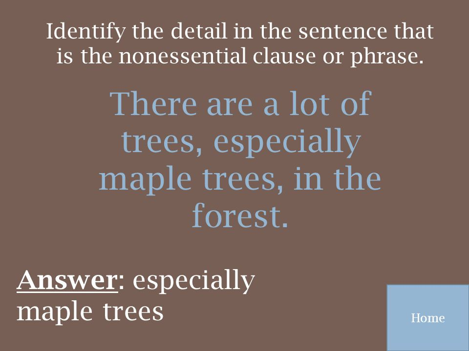 There are a lot of trees, especially maple trees, in the forest.