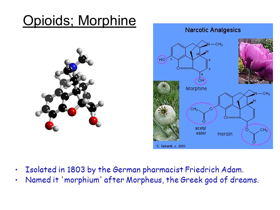 Opioids; Morphine Isolated in 1803 by the German pharmacist Friedrich Adam.