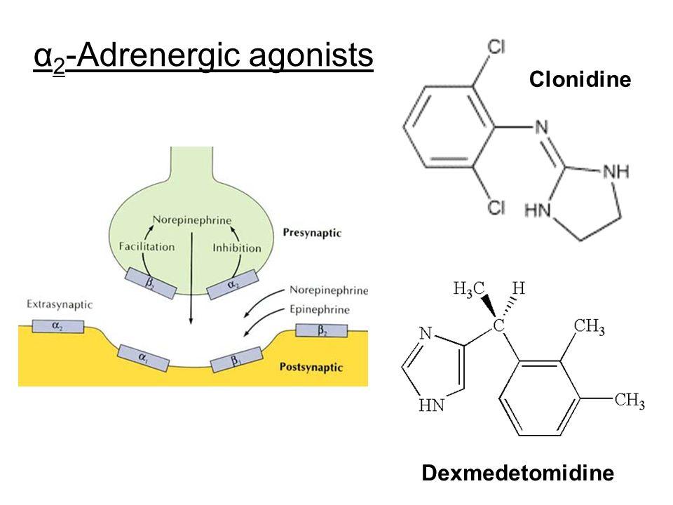 α2-Adrenergic agonists