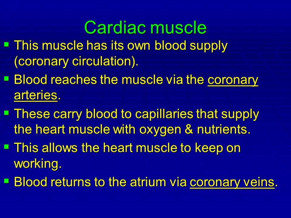 Cardiac muscle This muscle has its own blood supply (coronary circulation). Blood reaches the muscle via the coronary arteries.