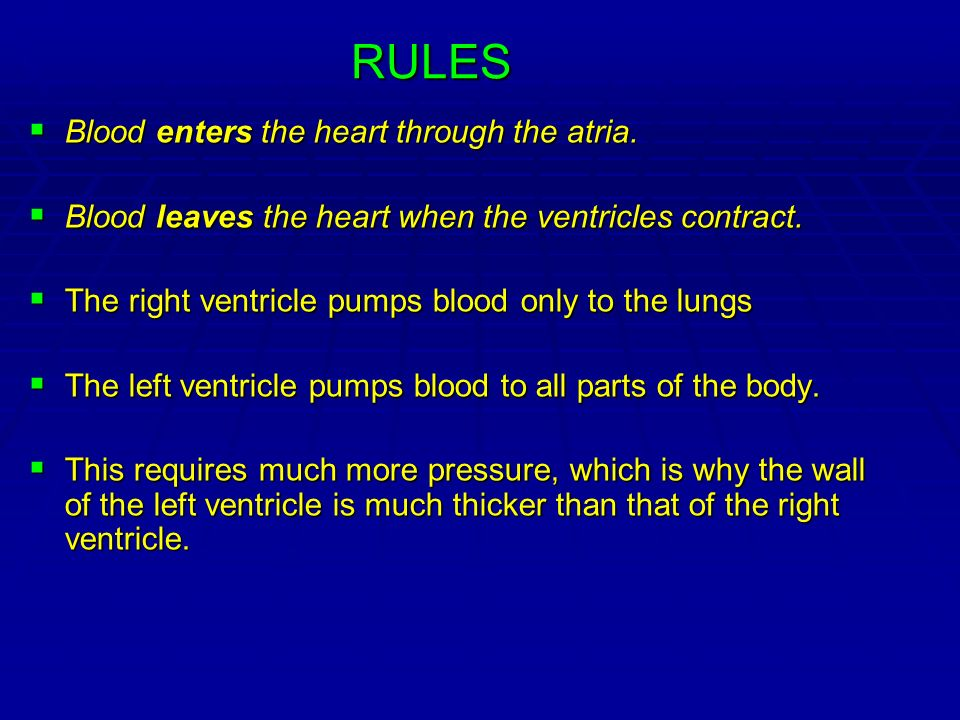 RULES Blood enters the heart through the atria.