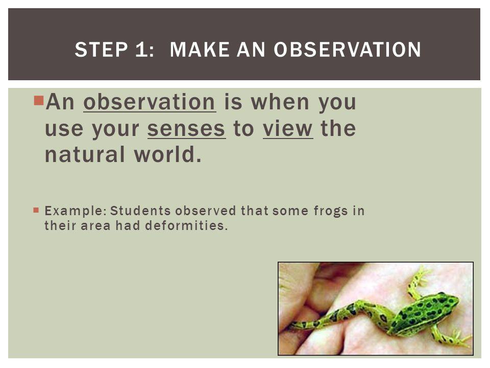 Step 1: Make an Observation