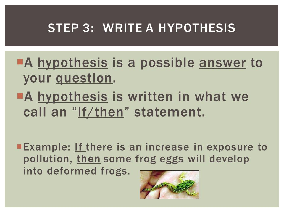 Step 3: Write a Hypothesis