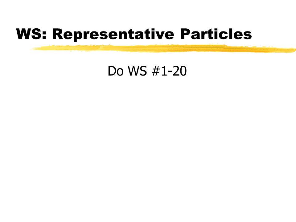 WS: Representative Particles