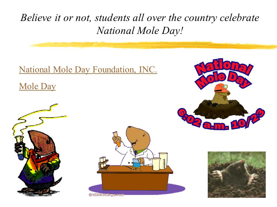 Believe it or not, students all over the country celebrate National Mole Day!
