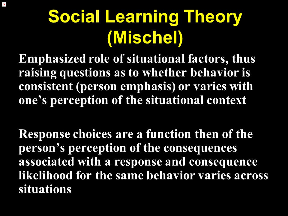 Social Learning Theory (Mischel)