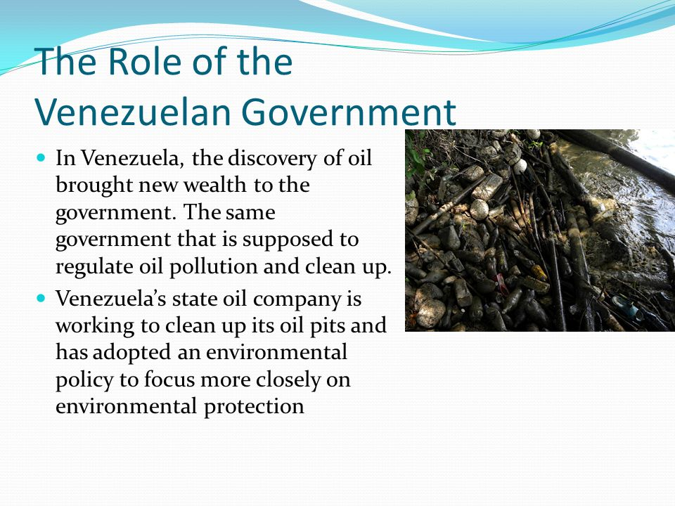 The Role of the Venezuelan Government
