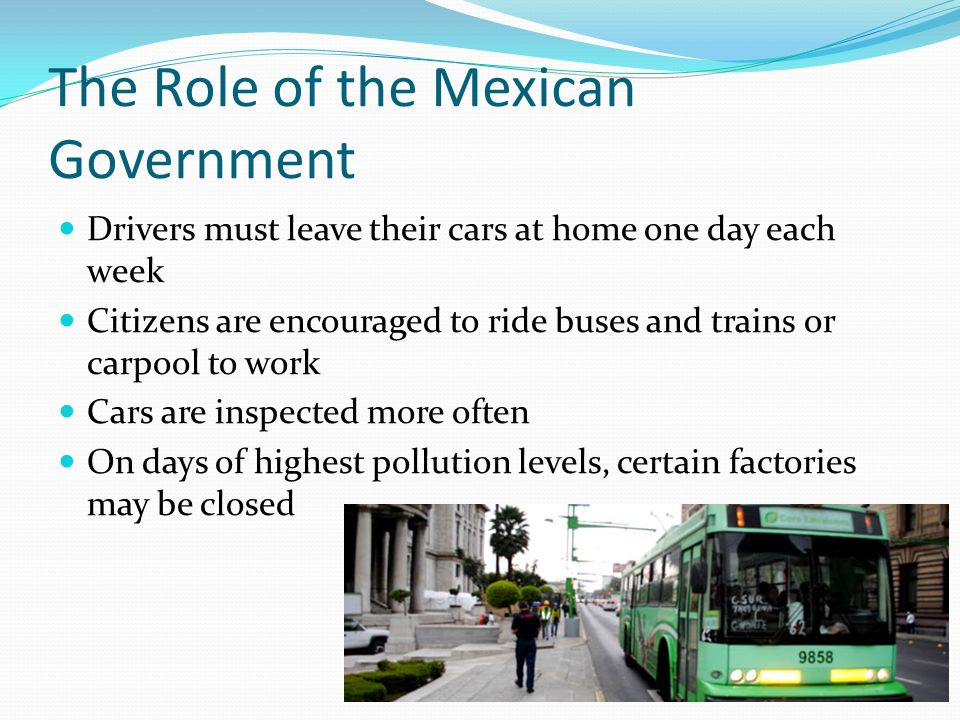 The Role of the Mexican Government