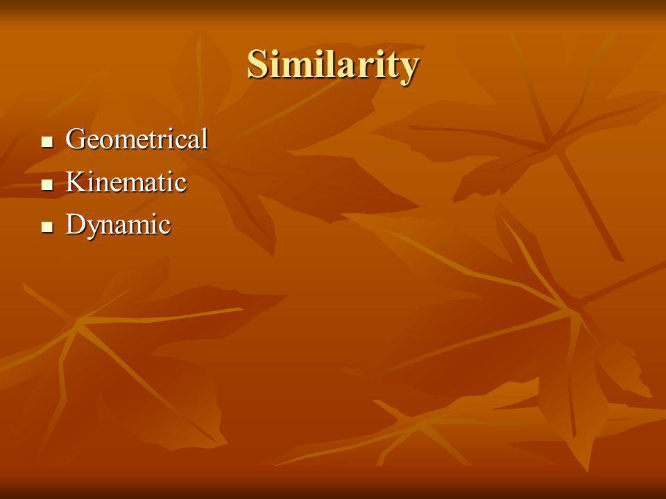 Similarity Geometrical Kinematic Dynamic