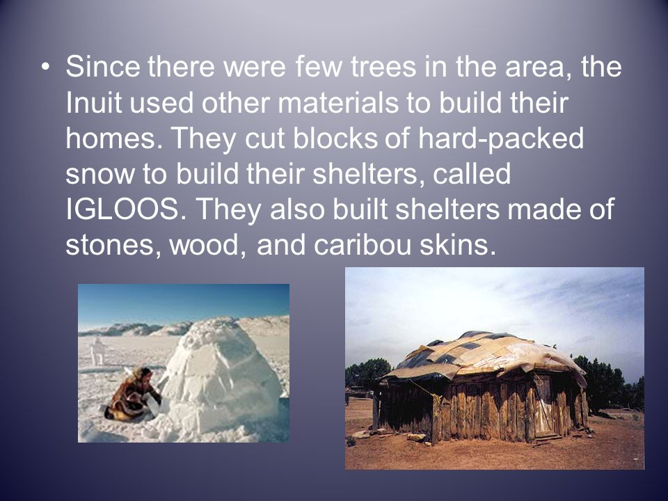 Since there were few trees in the area, the Inuit used other materials to build their homes.