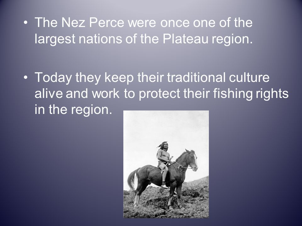 The Nez Perce were once one of the largest nations of the Plateau region.
