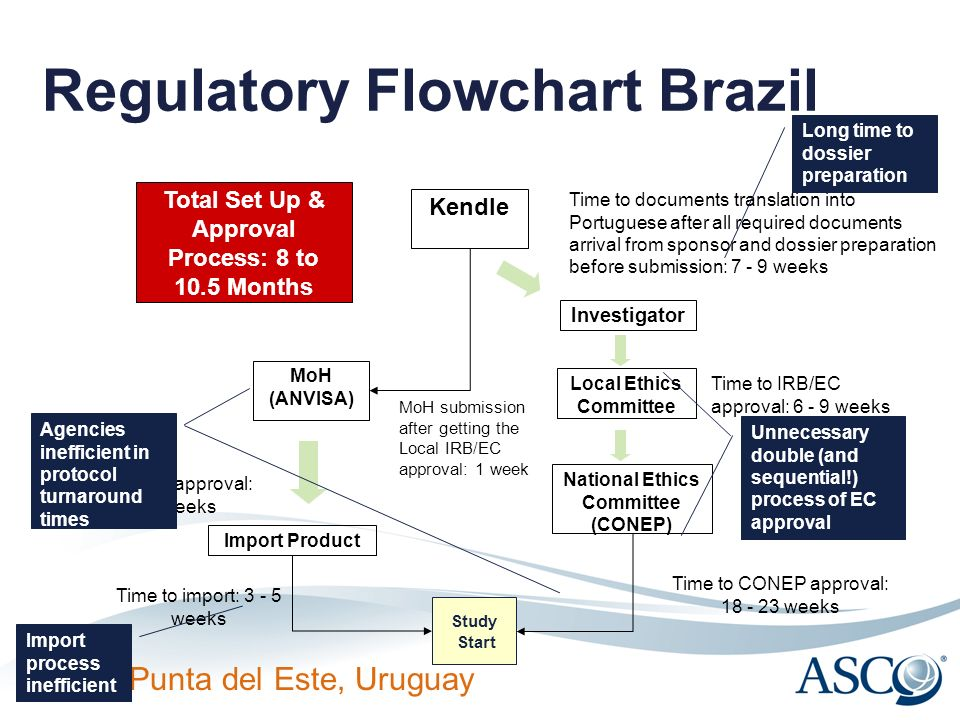 Regulatory Flowchart Brazil