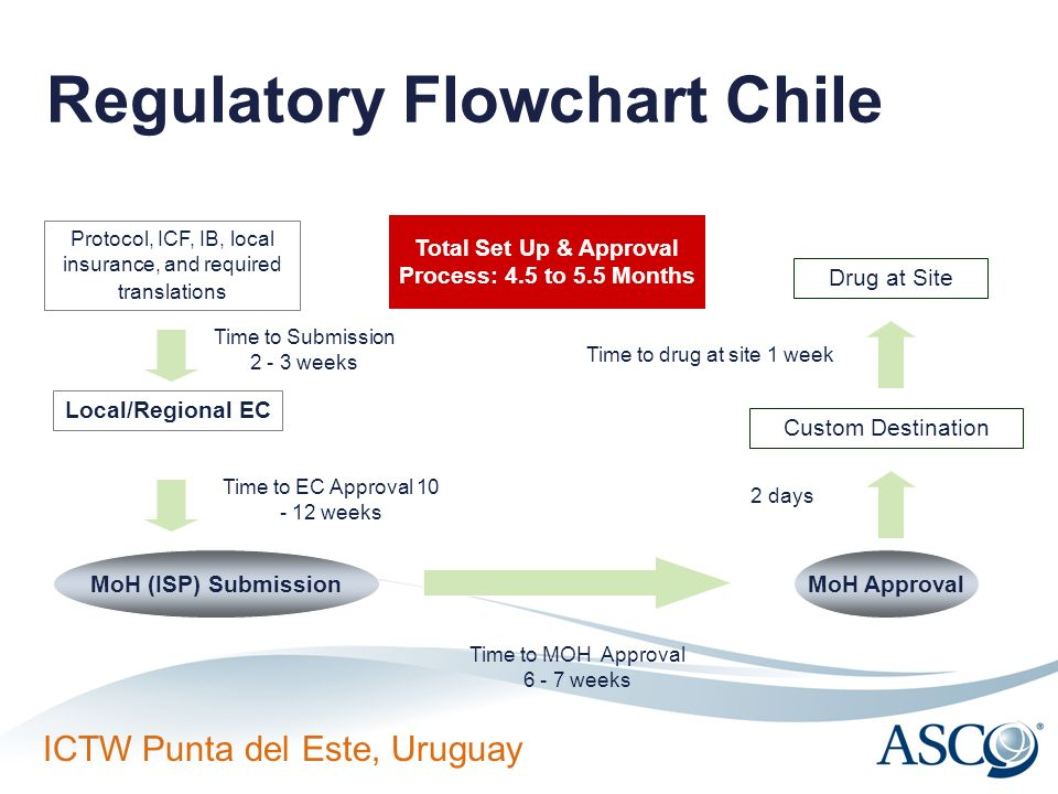Regulatory Flowchart Chile