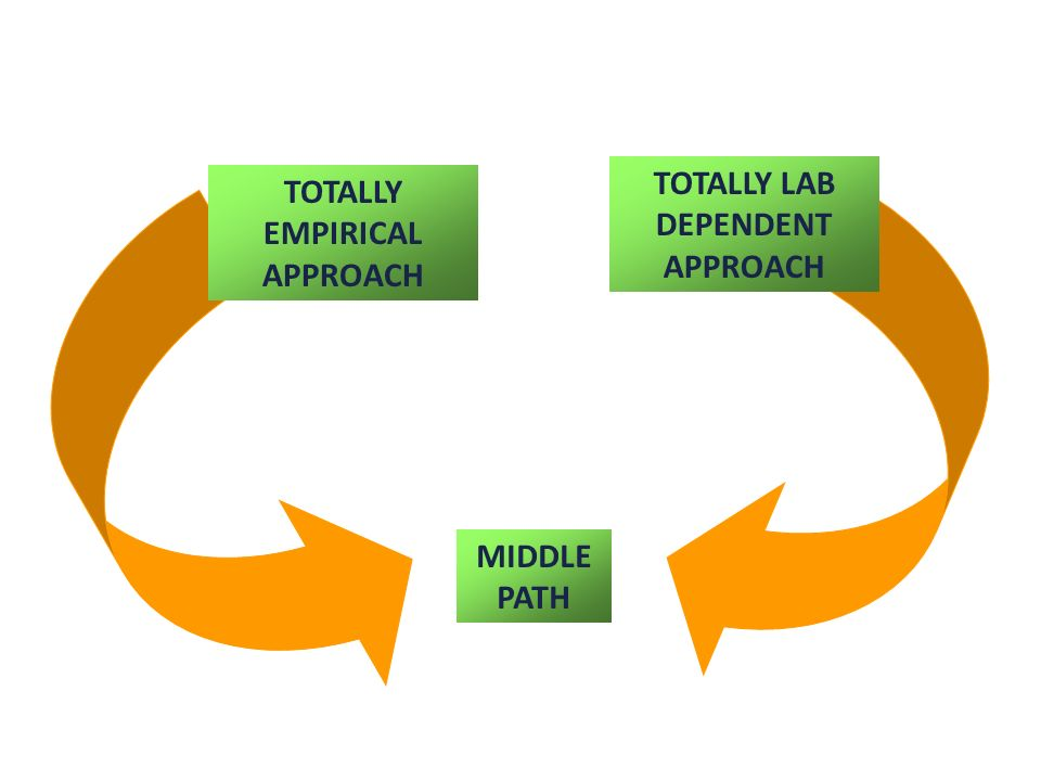 TOTALLY LAB DEPENDENT APPROACH TOTALLY EMPIRICAL APPROACH