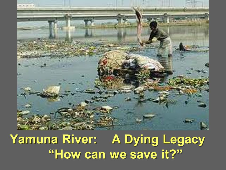 Yamuna River: A Dying Legacy How can we save it
