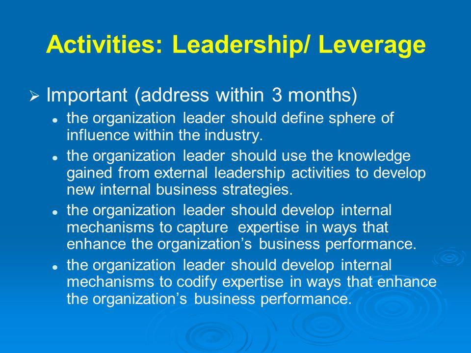 Activities: Leadership/ Leverage