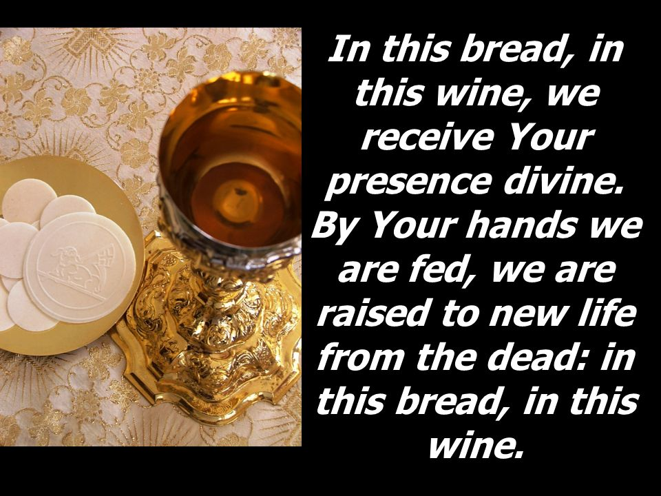 In this bread, in this wine, we receive Your presence divine