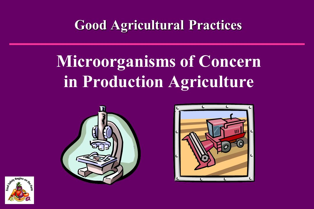 Good Agricultural Practices
