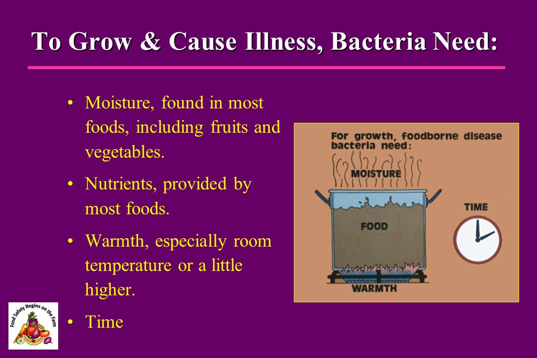 To Grow & Cause Illness, Bacteria Need: