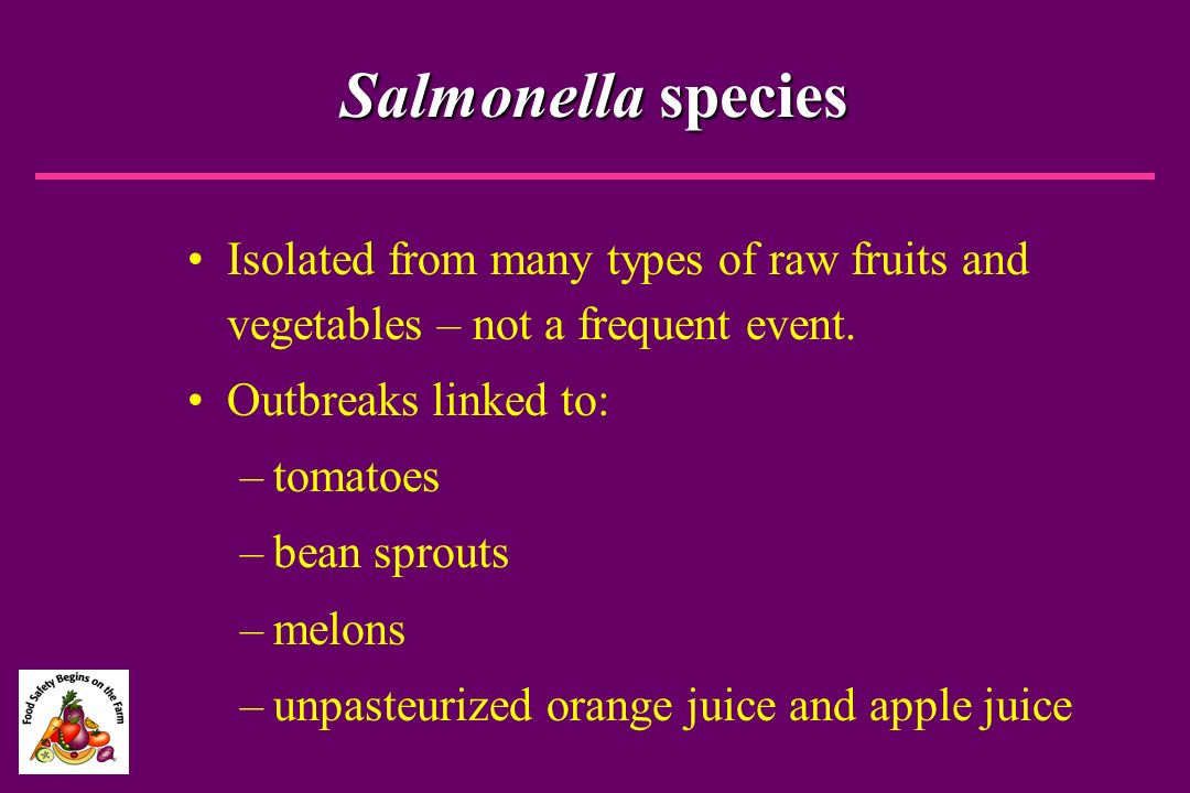 Salmonella species Isolated from many types of raw fruits and vegetables – not a frequent event. Outbreaks linked to:
