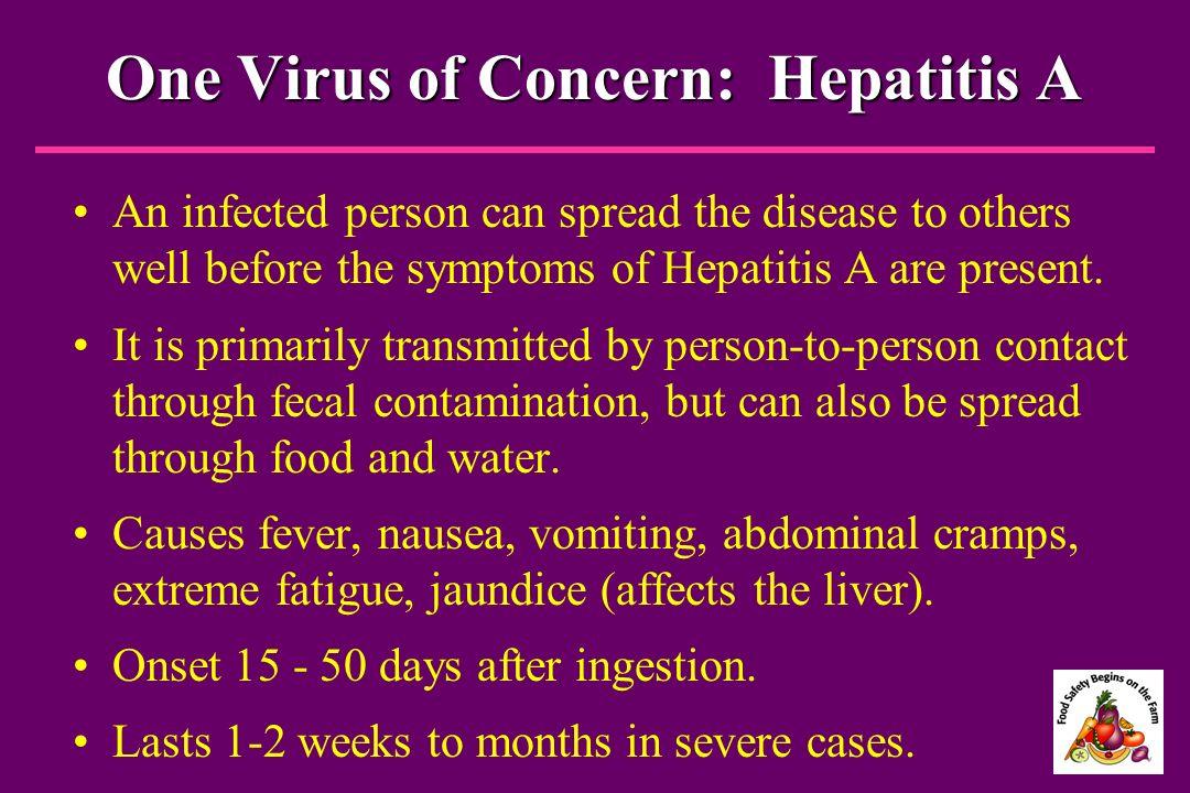 One Virus of Concern: Hepatitis A
