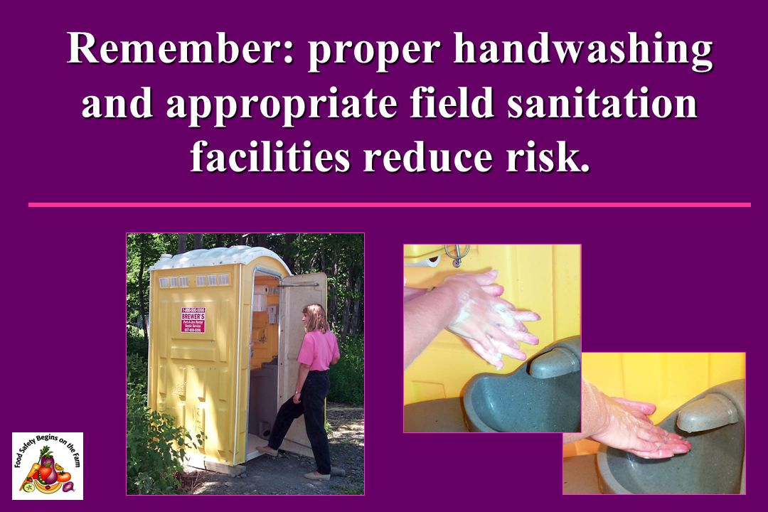 Remember: proper handwashing and appropriate field sanitation facilities reduce risk.