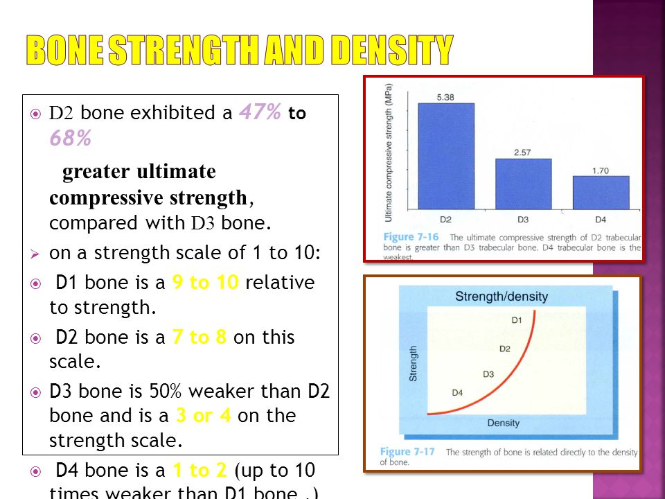 Bone Strength and Density