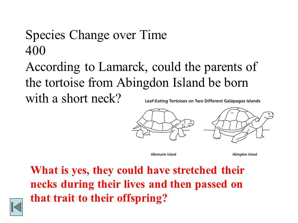 Species Change over Time 400
