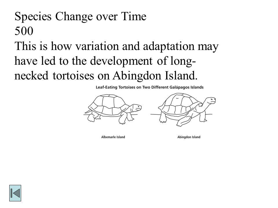 Species Change over Time