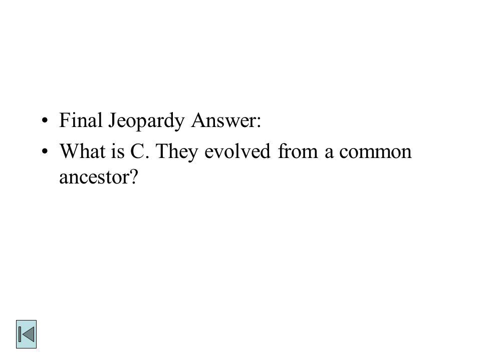 Final Jeopardy Answer: